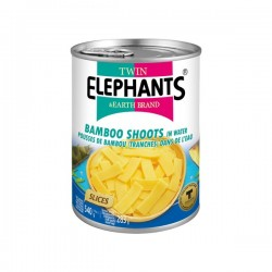 BAMBOO SHOOTS (SLICES) 540g TWIN ELEPHANT
