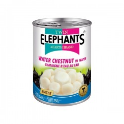 CHESTNUTS IN WATER 540g TWIN ELEPHANT