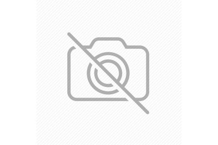 ΜΑΝΓΚΟ ΤΣΑΤΝΕΪ ΓΛΥΚΟ 320g PASCO